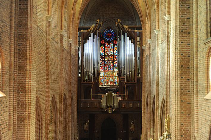 Organy katedra